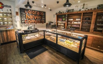 Why Your Cannabis Business May Need to Pay Multi-state Sales Taxes